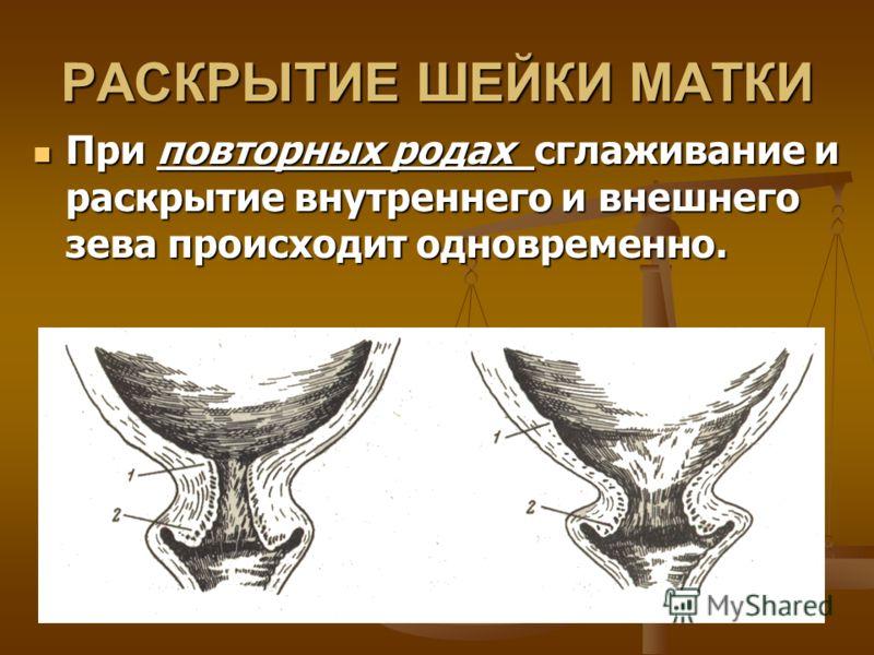 РАСКРЫТИЕ ШЕЙКИ МАТКИ При повторных родах сглаживание и раскрытие внутреннего и внешнего зева происходит одновременно. При повторных родах сглаживание и раскрытие внутреннего и внешнего зева происходит одновременно.