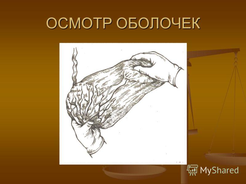 ОСМОТР ОБОЛОЧЕК