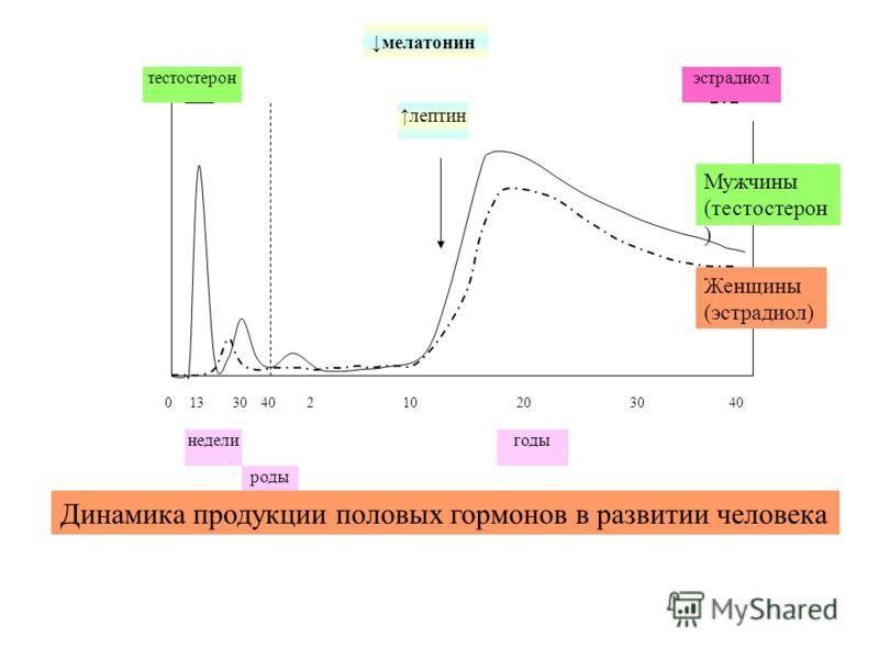 годы 040 роды недели 1330210203040 тестостеронэстрадиол лептин Динамика продукции половых гормонов в развитии человека Мужчины (тестостерон ) Женщины (эстрадиол) мелатонин
