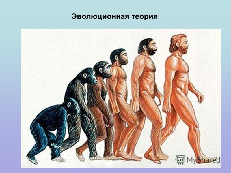 Эволюционная теория