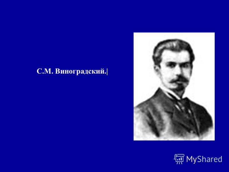 С.М. Виноградский.|