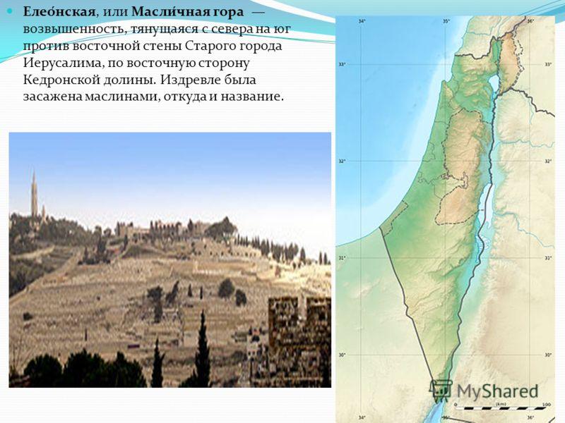 Елео́нская, или Масли́чная гора возвышенность, тянущаяся с севера на юг против восточной стены Старого города Иерусалима, по восточную сторону Кедронской долины. Издревле была засажена маслинами, откуда и название.