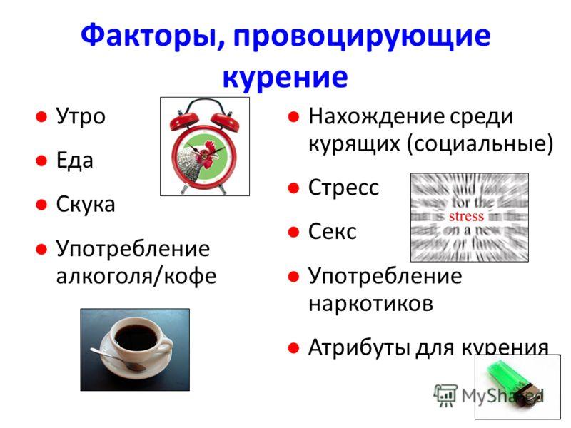 Факторы, провоцирующие курение Утро Еда Скука Употребление алкоголя/кофе Нахождение среди курящих (социальные) Стресс Секс Употребление наркотиков Атрибуты для курения