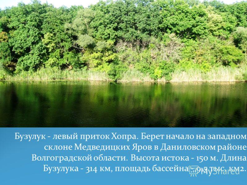 Бузулук - левый приток Хопра. Берет начало на западном склоне Медведицких Яров в Даниловском районе Волгоградской области. Высота истока - 150 м. Длина Бузулука - 314 км, площадь бассейна - 9,5 тыс. км2.