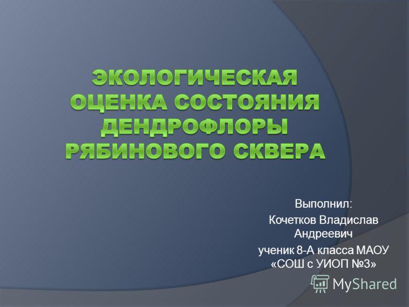 Выполнил: Кочетков Владислав Андреевич ученик 8-А класса МАОУ «СОШ с УИОП 3»