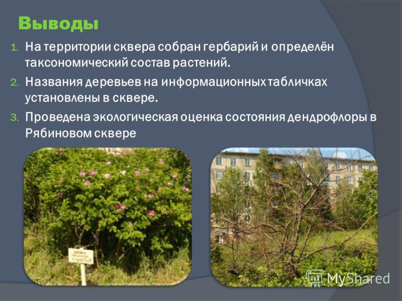 Выводы 1. На территории сквера собран гербарий и определён таксономический состав растений. 2. Названия деревьев на информационных табличках установлены в сквере. 3. Проведена экологическая оценка состояния дендрофлоры в Рябиновом сквере
