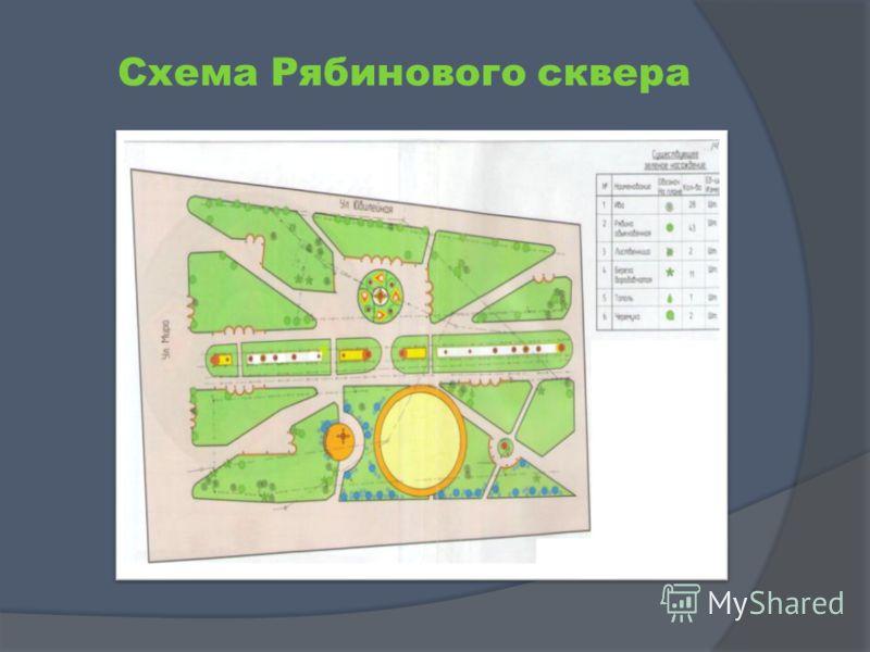 Схема Рябинового сквера