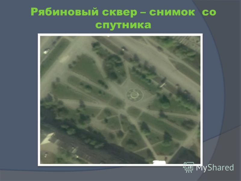 Рябиновый сквер – снимок со спутника