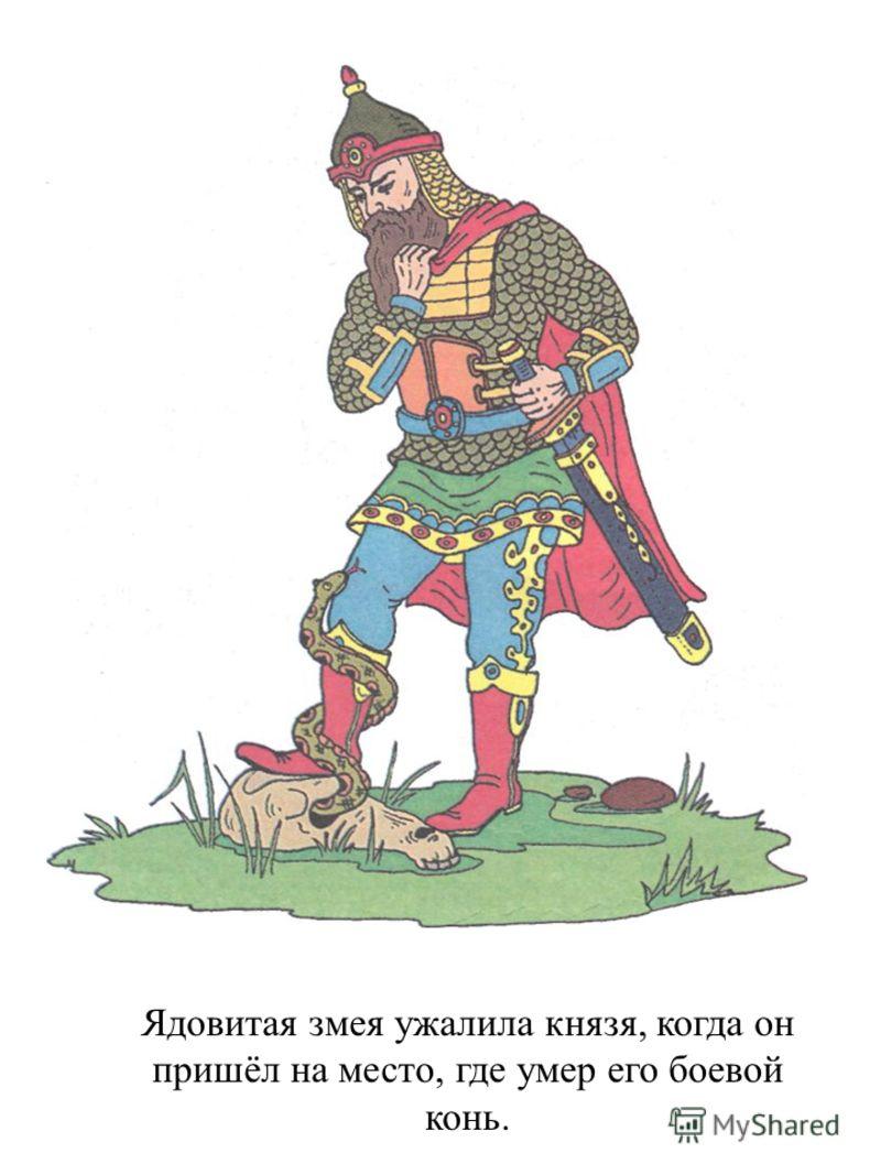 Ядовитая змея ужалила князя, когда он пришёл на место, где умер его боевой конь.