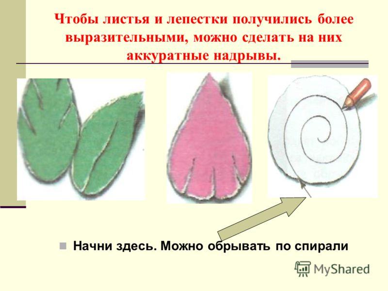 Чтобы листья и лепестки получились более выразительными, можно сделать на них аккуратные надрывы. Начни здесь. Можно обрывать по спирали