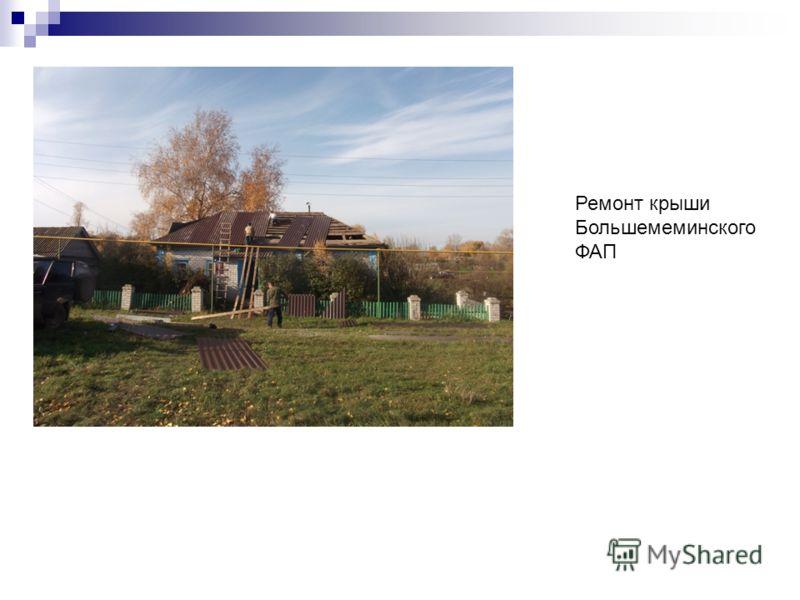 Ремонт крыши Большемеминского ФАП