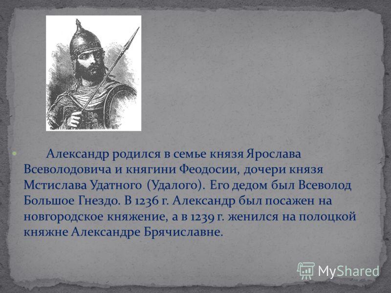 Александр родился в семье князя Ярослава Всеволодовича и княгини Феодосии, дочери князя Мстислава Удатного (Удалого). Его дедом был Всеволод Большое Гнездо. В 1236 г. Александр был посажен на новгородское княжение, а в 1239 г. женился на полоцкой кня