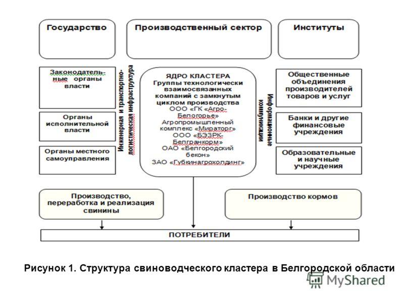 Рисунок 1. Структура свиноводческого кластера в Белгородской области