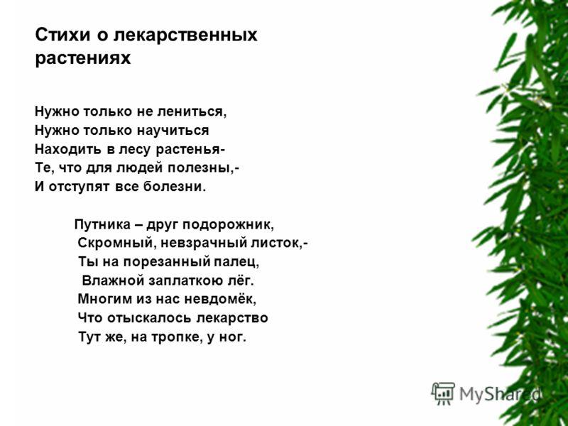 Стихи о лекарственных растениях Нужно только не лениться, Нужно только научиться Находить в лесу растенья- Те, что для людей полезны,- И отступят все болезни. Путника – друг подорожник, Скромный, невзрачный листок,- Ты на порезанный палец, Влажной за
