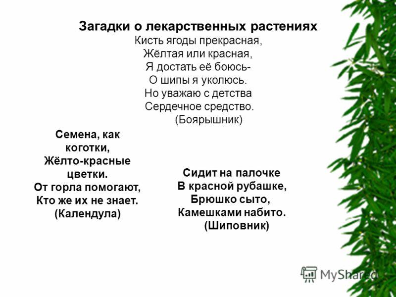 Загадки о лекарственных растениях Кисть ягоды прекрасная, Жёлтая или красная, Я достать её боюсь- О шипы я уколюсь. Но уважаю с детства Сердечное средство. (Боярышник) Семена, как коготки, Жёлто-красные цветки. От горла помогают, Кто же их не знает.