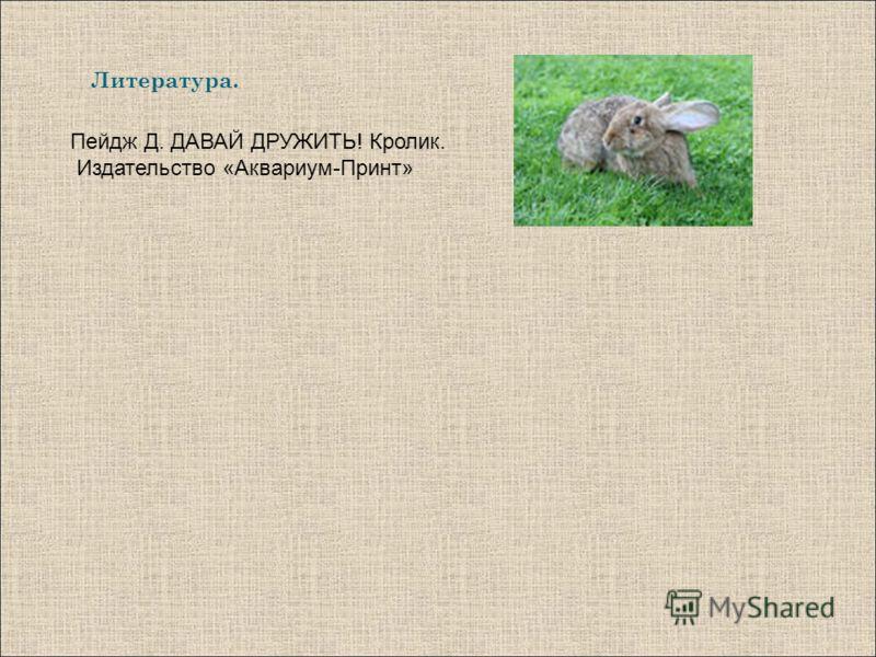 Литература. Пейдж Д. ДАВАЙ ДРУЖИТЬ! Кролик. Издательство «Аквариум-Принт»