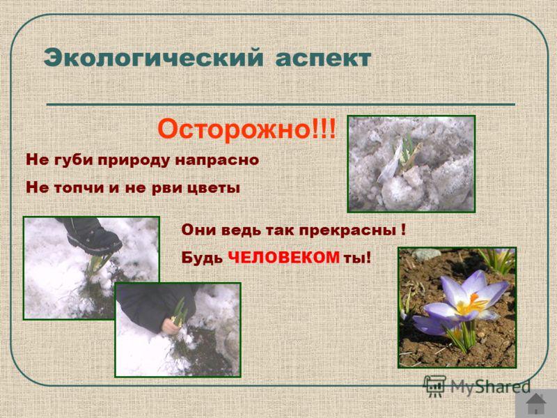 Не губи природу напрасно Не топчи и не рви цветы Они ведь так прекрасны ! Будь ЧЕЛОВЕКОМ ты! Экологический аспект Осторожно!!!