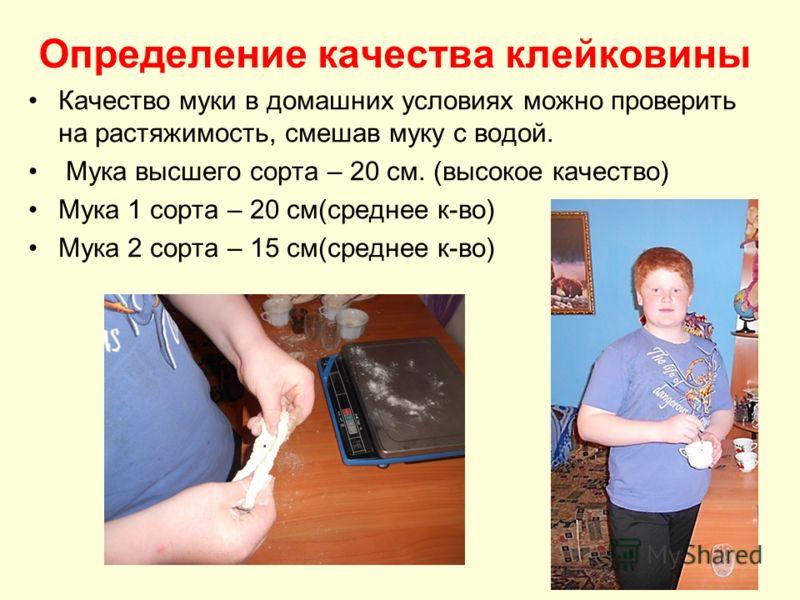 Определение качества клейковины Качество муки в домашних условиях можно проверить на растяжимость, смешав муку с водой. Мука высшего сорта – 20 см. (высокое качество) Мука 1 сорта – 20 см(среднее к-во) Мука 2 сорта – 15 см(среднее к-во)