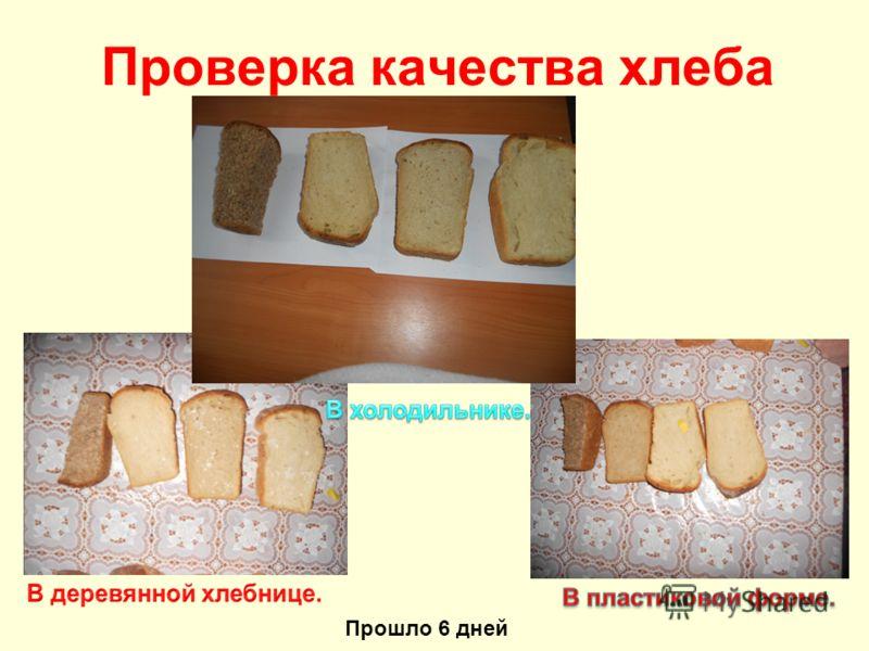 Проверка качества хлеба Прошло 6 дней