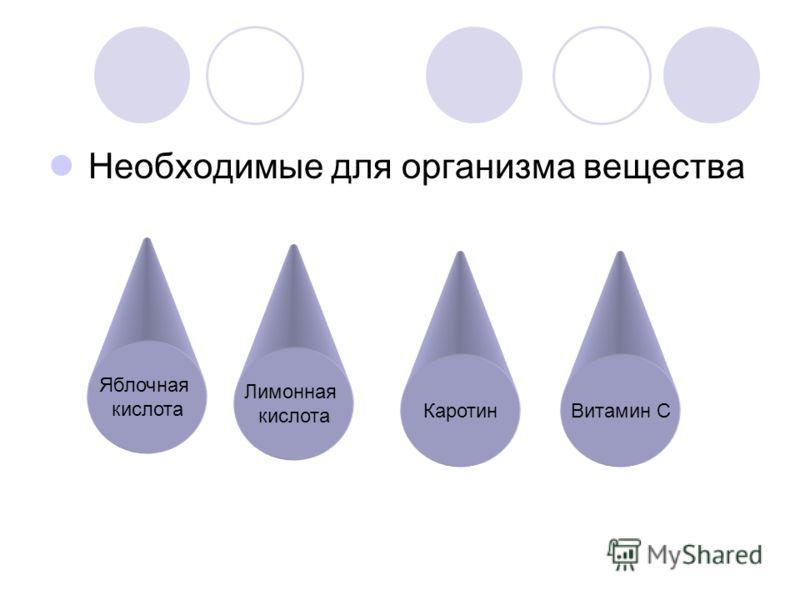 Необходимые для организма вещества Яблочная кислота Лимонная кислота КаротинВитамин С
