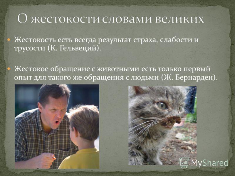 Жестокость есть всегда результат страха, слабости и трусости (К. Гельвеций). Жестокое обращение с животными есть только первый опыт для такого же обращения с людьми (Ж. Бернарден).