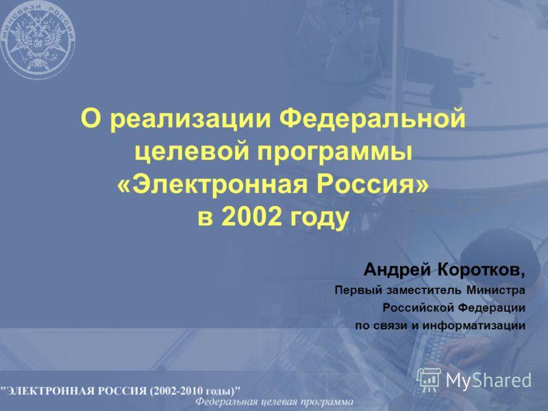 О реализации Федеральной целевой программы «Электронная Россия» в 2002 году Андрей Коротков, Первый заместитель Министра Российской Федерации по связи и информатизации