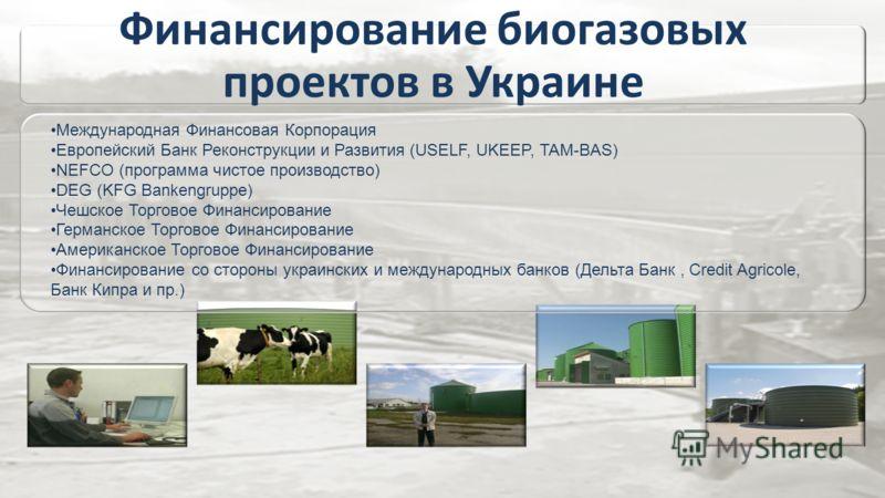 Финансирование биогазовых проектов в Украине Международная Финансовая Корпорация Европейский Банк Реконструкции и Развития (USELF, UKEEP, TAM-BAS) NEFCO (программа чистое производство) DEG (KFG Bankengruppe) Чешское Торговое Финансирование Германское