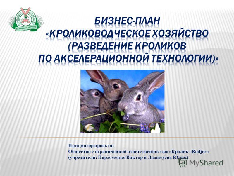 Инициатор проекта: Общество с ограниченной ответственностью «Кролик «Rodjer» (учредители: Пархоменко Виктор и Джансуева Юлия)