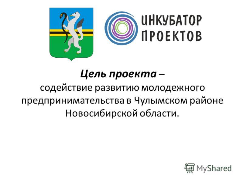 Цель проекта – содействие развитию молодежного предпринимательства в Чулымском районе Новосибирской области.
