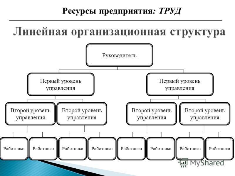 Ресурсы предприятия: ТРУД Руководитель Первый уровень управления Второй уровень управления Работники