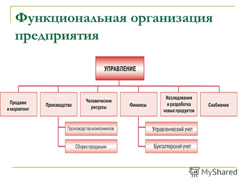 Функциональная организация предприятия