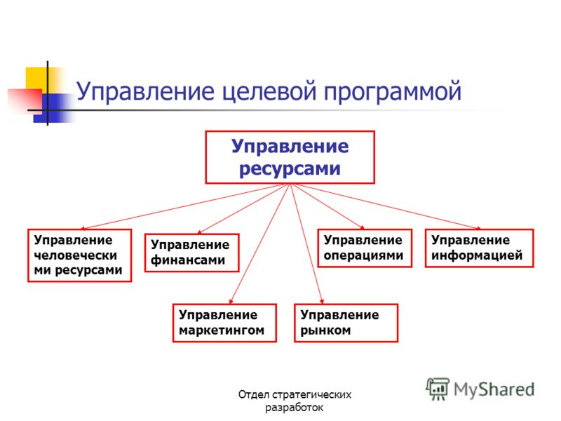 Отдел стратегических разработок Управление целевой программой Управление ресурсами Управление маркетингом Управление человечески ми ресурсами Управление операциями Управление информацией Управление финансами Управление рынком