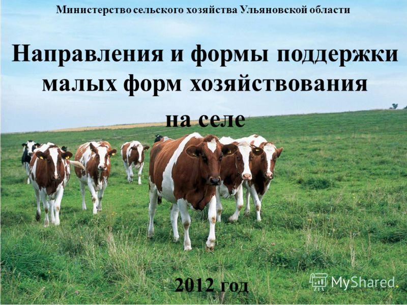 Направления и формы поддержки малых форм хозяйствования на селе Министерство сельского хозяйства Ульяновской области 2012 год