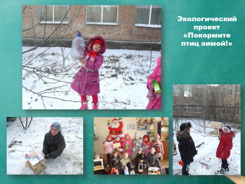 Экологический проект «Покормите птиц зимой!»