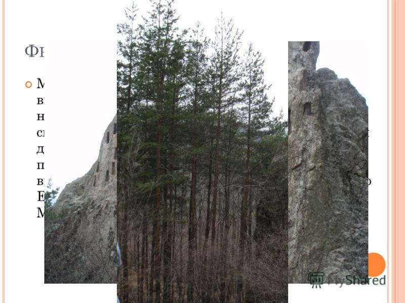 Ф РАКИЙСКИЕ ЗАХОРОНЕНИЯ Мы отправились к фракийским гробницам. Они выглядели как маленькие ниши, выдолбленные на возвышающейся над землей скале. Весь вид скалы с нишами напоминал собой фантастический дом. Скала состоит из лавы или туфа. Ее поверхност