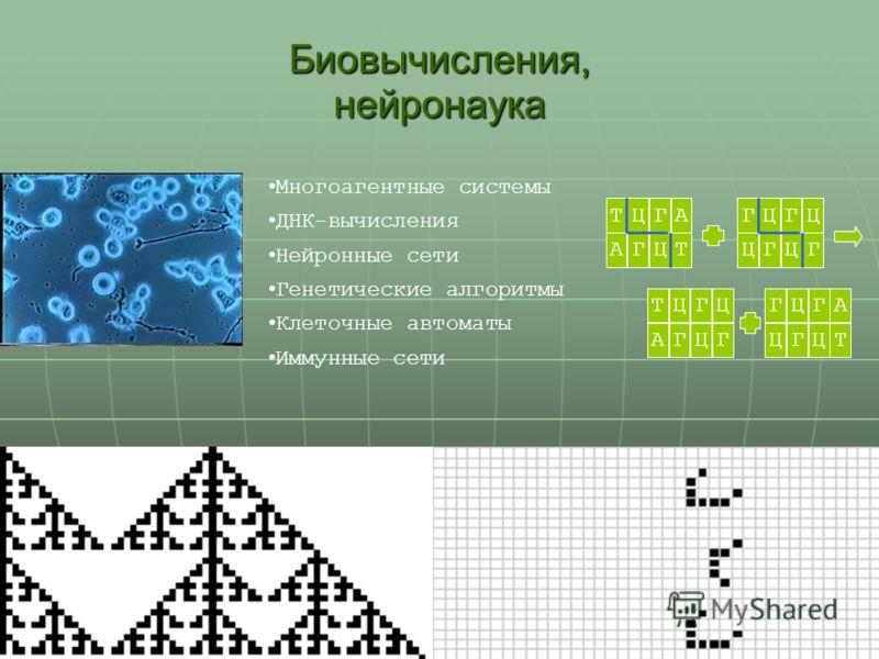 31 Биовычисления, нейронаука Многоагентные системы ДНК-вычисления Нейронные сети Генетические алгоритмы Клеточные автоматы Иммунные сети ТЦГААГЦТГЦГЦ ЦГЦГ ГЦГА ЦГЦТ ТЦГЦ АГЦГ ТЦГААГЦТГЦГЦ ЦГЦГ ГЦГА ЦГЦТ ТЦГЦ АГЦГ