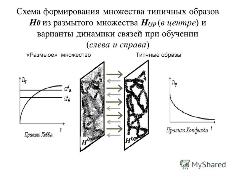 Схема формирования множества типичных образов H 0 из размытого множества H typ (в центре) и варианты динамики связей при обучении (слева и справа) РРазмытое «Размыое» множествоТипчные образы