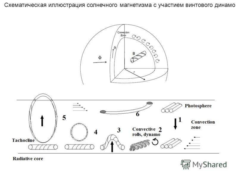 Схематическая иллюстрация солнечного магнетизма с участием винтового динамо