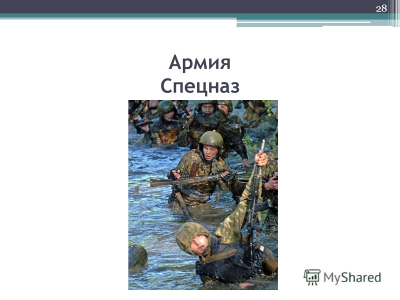 Армия Спецназ 28
