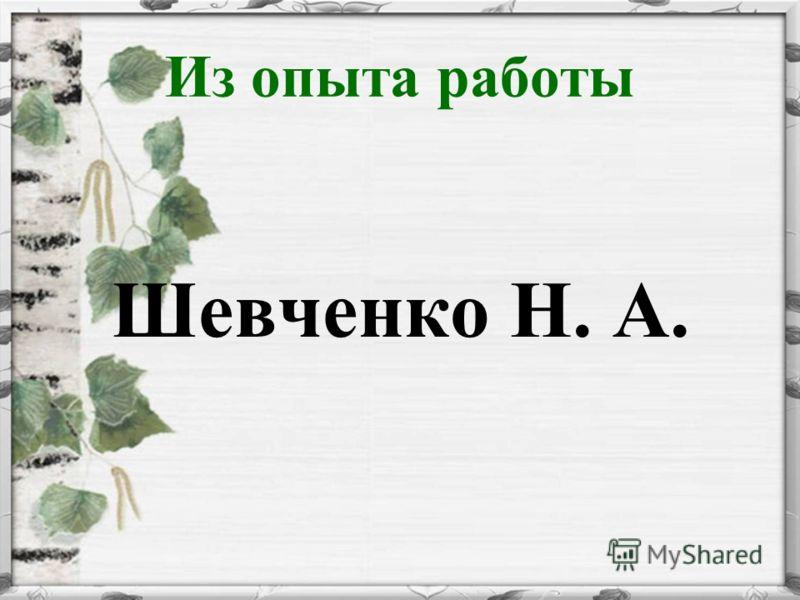 Из опыта работы Шевченко Н. А.