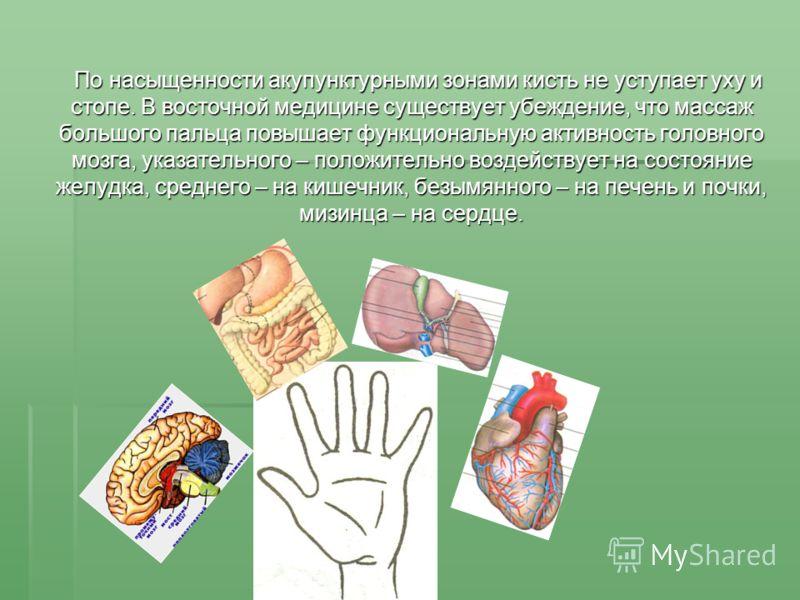 По насыщенности акупунктурными зонами кисть не уступает уху и стопе. В восточной медицине существует убеждение, что массаж большого пальца повышает функциональную активность головного мозга, указательного – положительно воздействует на состояние желу