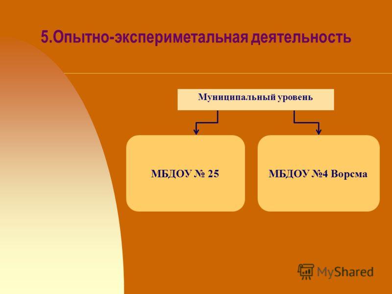 5.Опытно-экспериметальная деятельность МБДОУ 25МБДОУ 4 Ворсма Муниципальный уровень