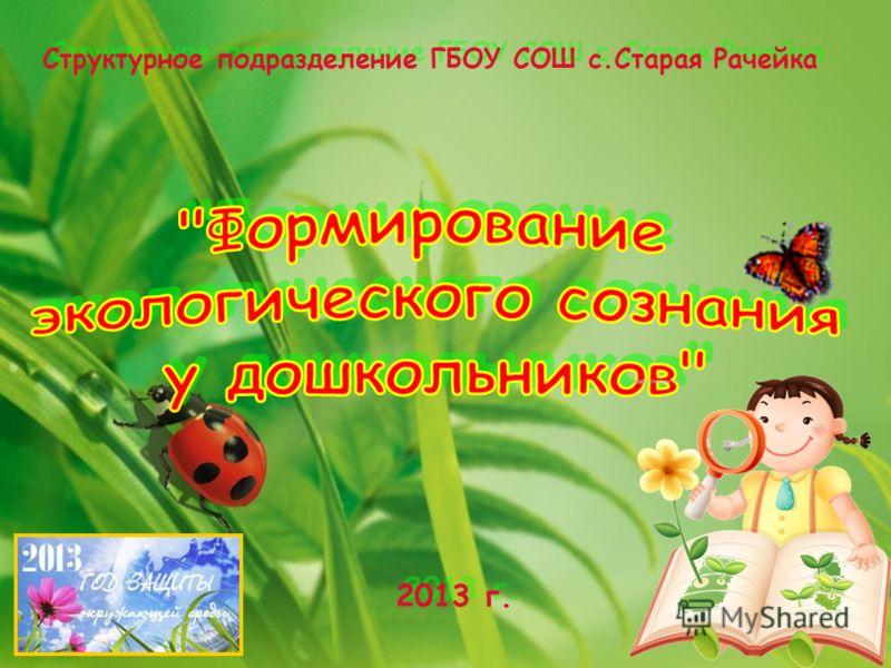 Структурное подразделение ГБОУ СОШ с.Старая Рачейка 2013 г.
