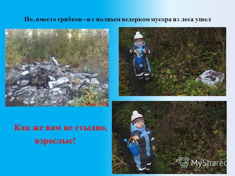 Но, вместо грибков –я с полным ведерком мусора из леса ушел Как же вам не стыдно, взрослые!