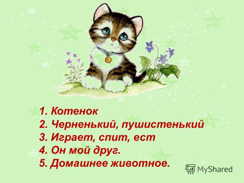 1. Котенок 2. Черненький, пушистенький 3. Играет, спит, ест 4. Он мой друг. 5. Домашнее животное.