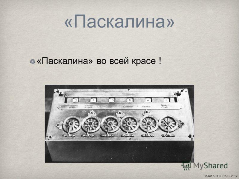 «Паскалина» «Паскалина» во всей красе ! Слайд 5 ТЕКО 15.10.2012