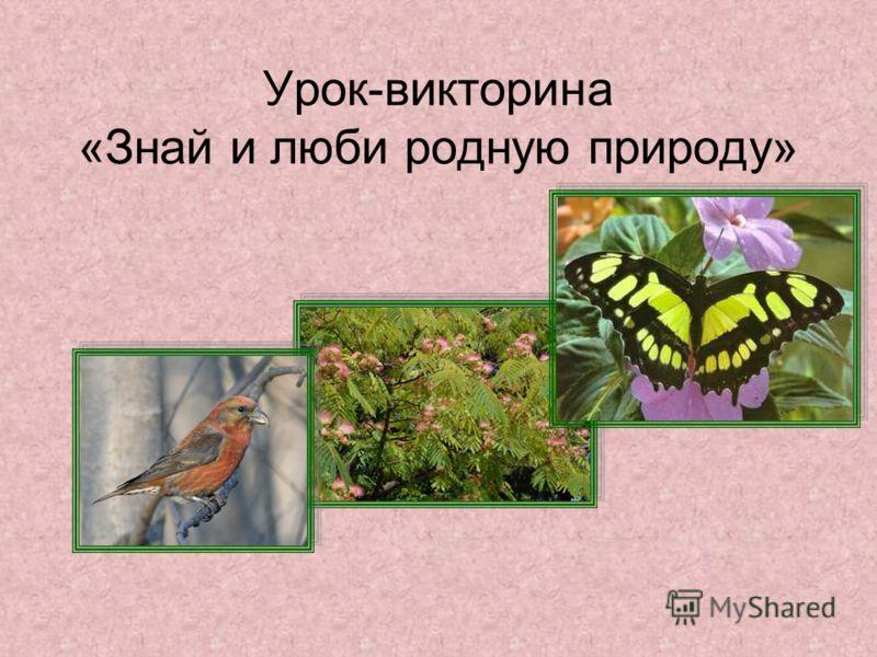 Урок-викторина «Знай и люби родную природу»