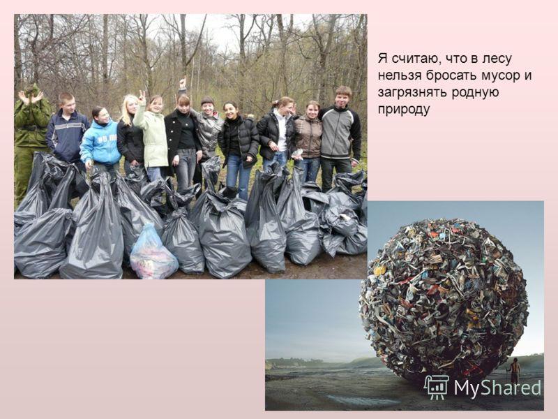 Я считаю, что в лесу нельзя бросать мусор и загрязнять родную природу