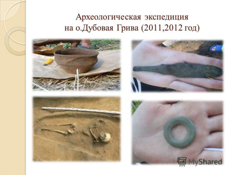 Археологическая экспедиция на о.Дубовая Грива (2011,2012 год)