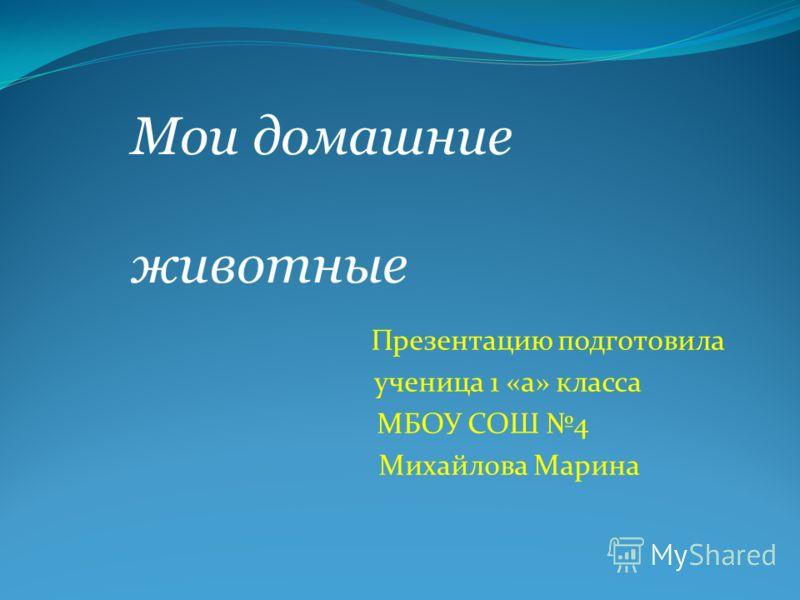 Презентацию подготовила ученица 1 «а» класса МБОУ СОШ 4 Михайлова Марина Мои домашние животные